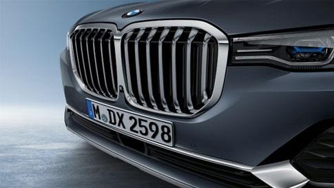 Parrilla en forma de riñón BMW